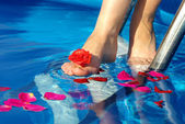 Leg with a rose — Stock Photo