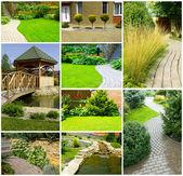 Ogród kolaż — Zdjęcie stockowe