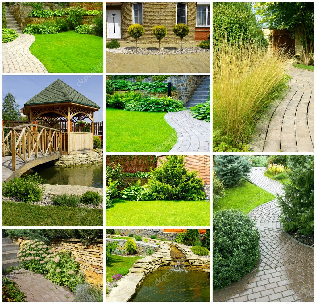 Picture of a Garden collage — Foto Stock #1069426