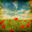 Grunge poppies background — Stok Fotoğraf #1070407