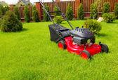 草坪割草机 — 图库照片