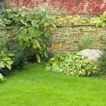 Garden — Stock Photo #1085409