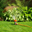 Watering sprinkler - Foto Stock