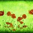 Grunge poppies background — Stock Photo #1249768