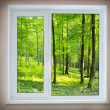 Window — Stock Photo #1251863