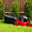 Stockfoto: Lawn mower
