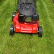 Lawn mower — Photo #2624373