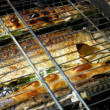 Fish on coals — Stock Photo
