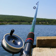 Fishing rod — Stock Photo #1280786