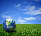 Landscape with globe — Stock Photo