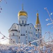 Russiorthodox church — Stock Photo #1061060