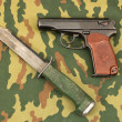 Stock Photo: Army knife and handgun
