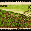 Vintage Indian postage stamp - Stock Photo