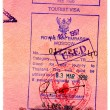 Passport stamps — Stock Photo #1305394