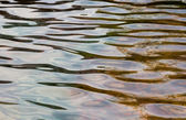 Water ripple background — Stock Photo