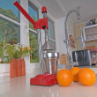 Stock Photo: Oranges and juicer