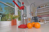 Oranges and juicer — Stock Photo