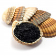 Caviar — Stock Photo