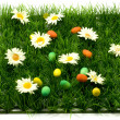Easter grass and eggs — Stock Photo #1713683