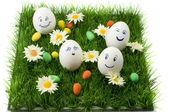 Happy eggs — Stock Photo