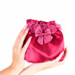 womans bag — Stock Photo