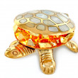 Royalty-Free Stock Photo: Gold turtle