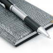 Pen and notebook — Stock Photo #1098404