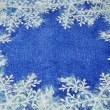 Snowflake — Stock Photo #1361103