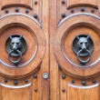 Door with a wolf head — Stock Photo