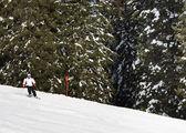 Una mujer se puede esquiar en la estación de esquí — Foto de Stock