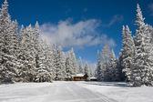 Zimní krajina po sněhu — Stock fotografie
