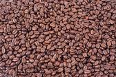 Bean coffee — Stock Photo