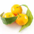 Three mandarins with leafs isolated on w — Stock Photo