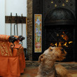 Dog sit near the fireplace — Stock Photo