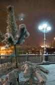 Nightly city in winter — Stock Photo