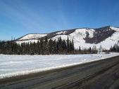 Road in Bugle Altai in winter — Stock Photo