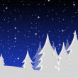 Winter night landscape — Stock Photo