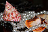 Mussels and pearls — Stock Photo