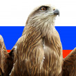 Symbol of Russia — Stock Photo