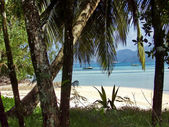 Beach on Seychelles — Stock fotografie