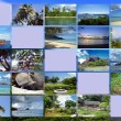 Collage Seychelles — Stock Photo