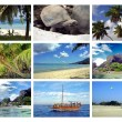 Stock Photo: Holidays Seychelles