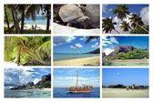 Holidays Seychelles — Stock Photo