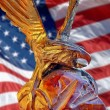 Eagle and  American flag — Stockfoto