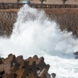Wave crashing on the breakwater — Stock Photo