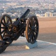 19th century cannon — Stock Photo
