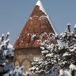 Mosque after a snowfall. Erzurum, Turkey — Stockfoto