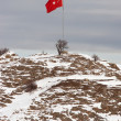 Turkish flag at Akdamar Island - Stockfoto