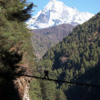 Stock Photo: Porter crossing rope bridge in Himalaya,