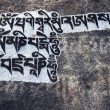 Buddhist mantra stone, Himalayas, Nepal — Stock Photo
